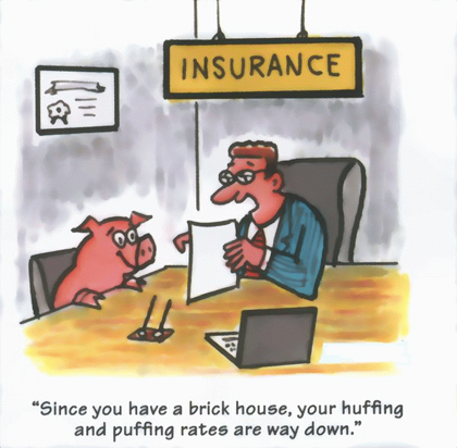 Homeowner's Insurance Cartoon