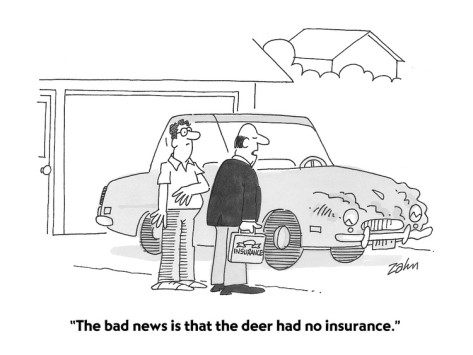 Auto Insurance Cartoon Radiusia