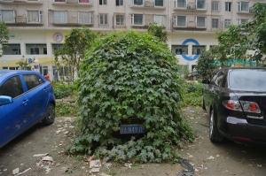 btw-131018-china-car-01.photoblog600