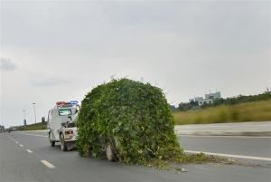 btw-131018-china-car-05.photoblog600
